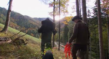 """""""Waidmannshail – Jagd in Österreich"""" (2015)"""